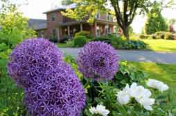Flowers & Thyme Bed and Breakfast Lancaster PA