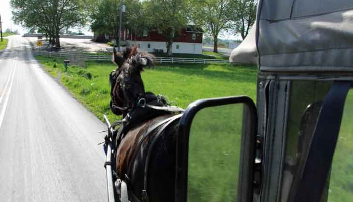 Lancaster County PA Amish buggy rides