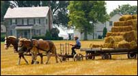Amish Experience at Plain and Fancy Farm